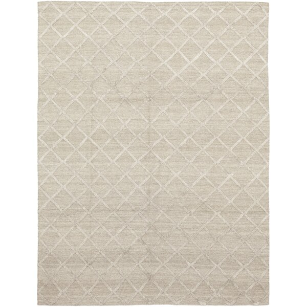 One-of-a-Kind Delano Hand-Knotted Wool Beige Indoor Area Rug by Isabelline