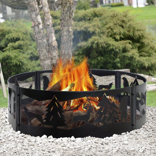 Steel Wood Burning Fire ring by Pleasant Hearth