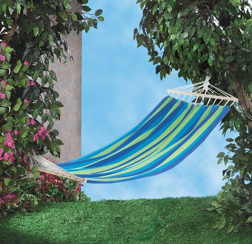 Derry Stripe Single Tree Hammock by Bay Isle Home