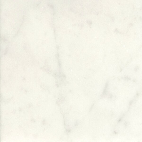 Marble 18 x 18 Field Tile in Bianco Gioia by Emser Tile