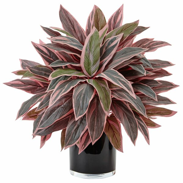 Artificial Caladium Desktop Foliage Plant in Planter by Orren Ellis