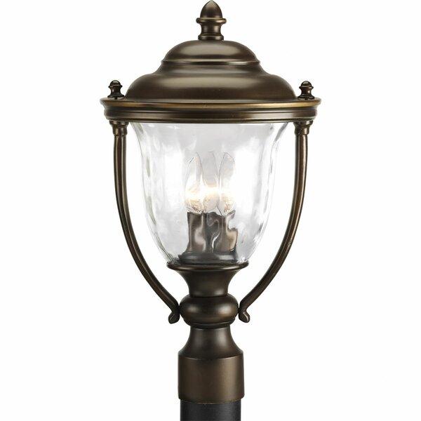 Triplehorn 3-Light Lantern Head by Alcott Hill