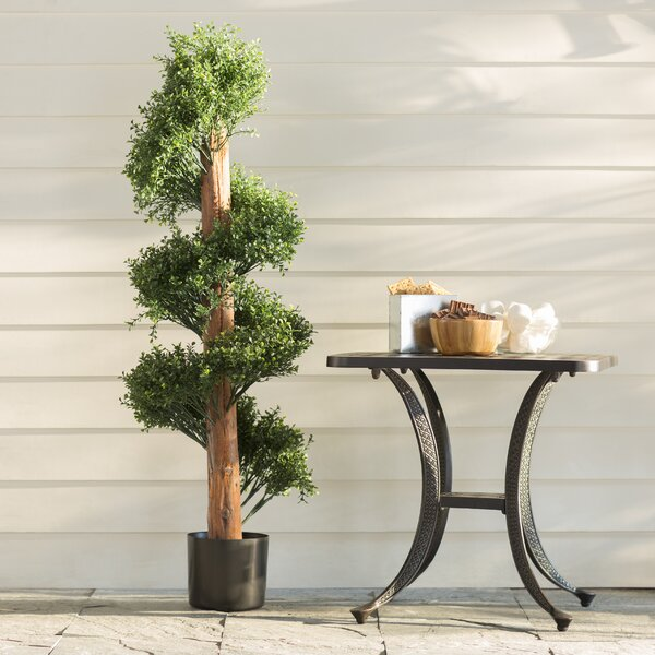 Green Boxwood Tree in Pot by Three Posts