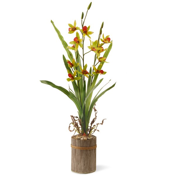 Potted Lilies Floral Arrangement in Pot by National Tree Co.