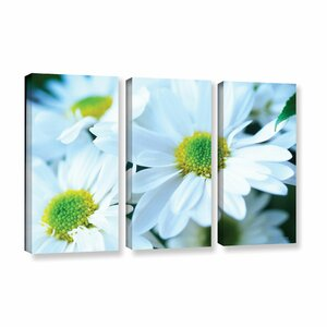 Fresh Daisies by Kathy Yates 3 Piece Photographic Print on Gallery Wrapped Canvas Set by ArtWall