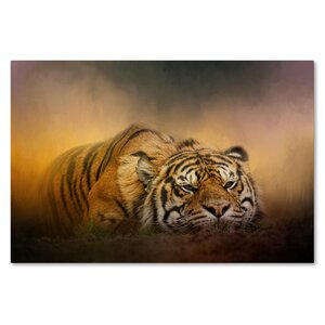 'The Tiger Awakens' Graphic Art Print on Wrapped Canvas by Trademark Fine Art