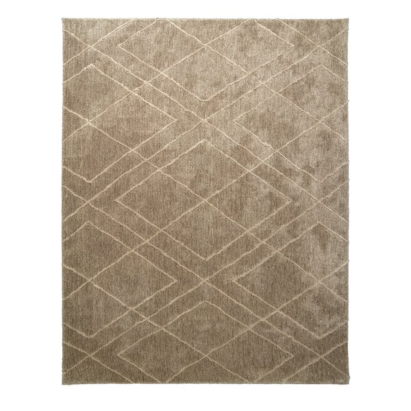 Kyzer Taupe Area Rug by Mercer41