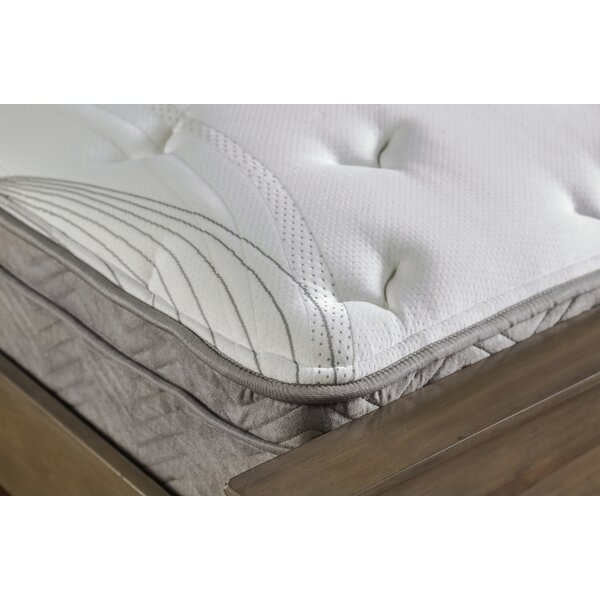 Kaylie 12 Medium Plush Mattress by Hokku Designs