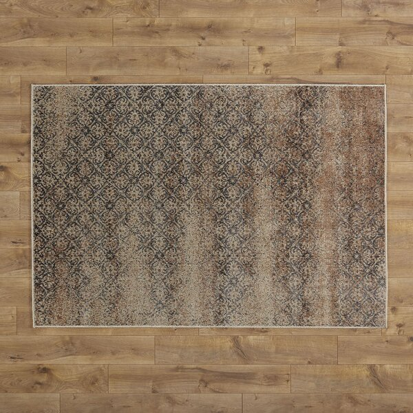 Isaiah Rug by Birch Lane™