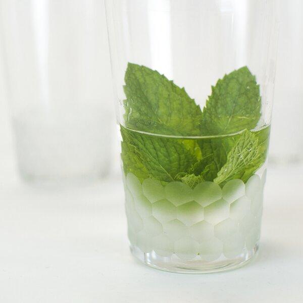 Plourde Handmade Every Day Glass (Set of 6) by Latitude Run