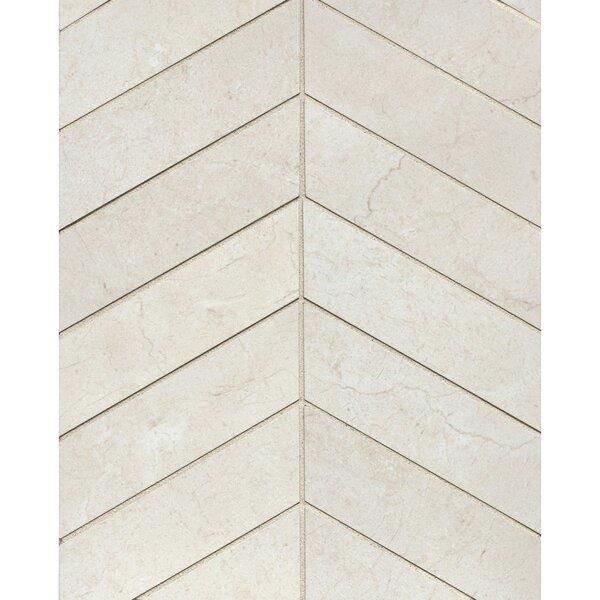 El Dorado Chevron 2 x 6 Porcelain Mosaic Tile in Shell by Grayson Martin