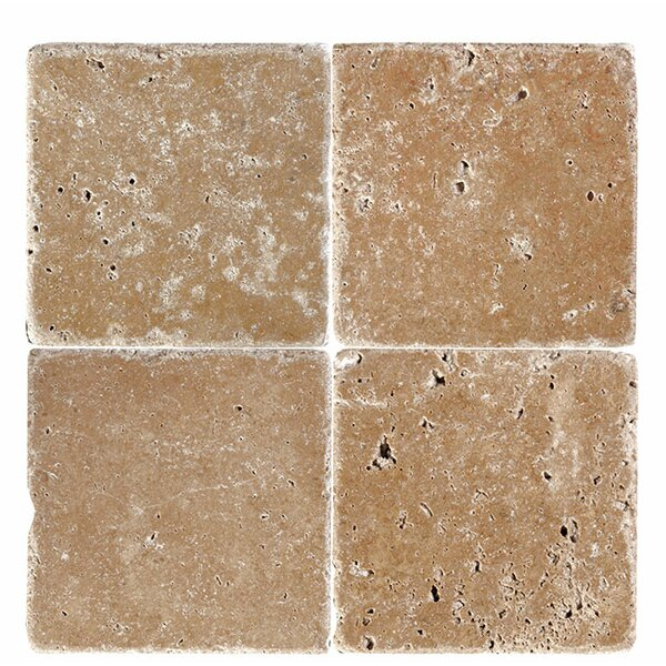 6 x 6 Travertine Field Tile in Expresso by Parvatile