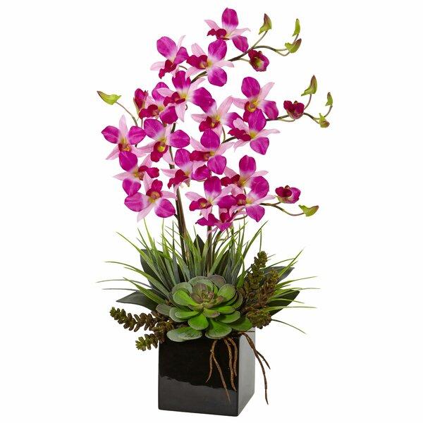 Artificial Orchid and Succulent Floral Arrangement in Vase by Orren Ellis