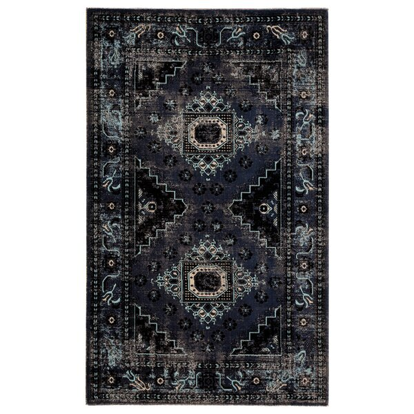 Janicki Medallion Black/Blue Indoor/Outdoor Area Rug by World Menagerie