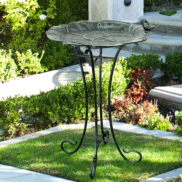 Lily Pad Birdbath by Innova Hearth and Home