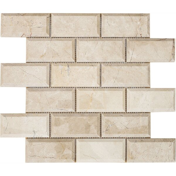 Crema Marfil Beveled Brick 2 x 4 Stone Mosaic Tile Polished by Parvatile