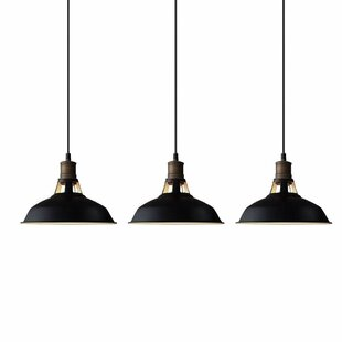 Best Reviews Winsford 3-Light Dome Pendant ByWilliston Forge