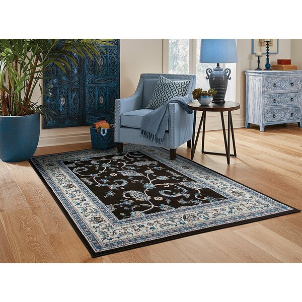 Resendiz Black Indoor/Outdoor Area Rug by Charlton Home