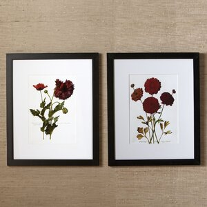 Sepal Framed Prints (Set of 2) by Birch Lane™
