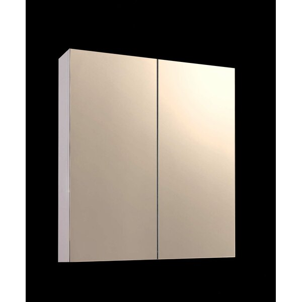 Tyrone 24 x 24 Surface Mount Medicine Cabinet by Ebern Designs