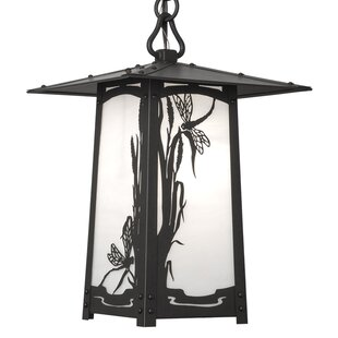 Read Reviews Dever 1-Light Outdoor Hanging Lantern By World Menagerie