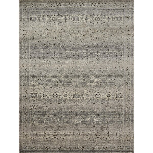 Diez Gray/Charcoal Area Rug by Bloomsbury Market