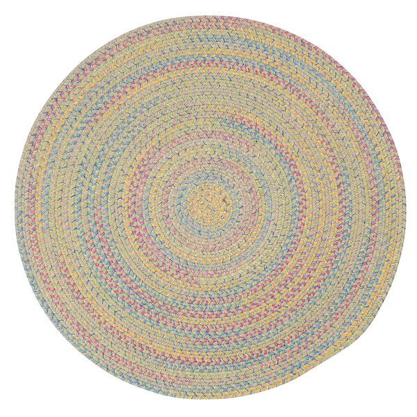 Oliver Braided Reversible Area Rug by Harriet Bee