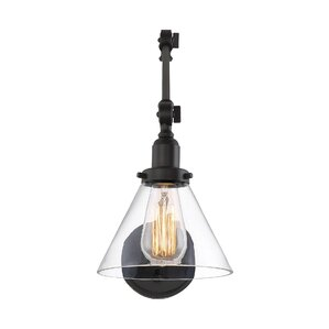 Serena 1-Light Spotlight