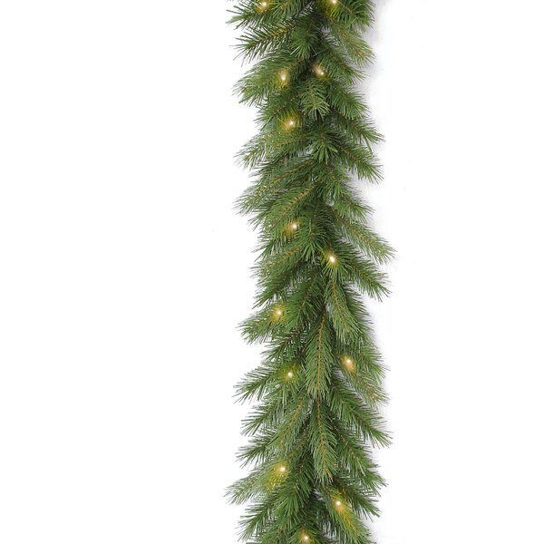 Deerfield Fir Garland by National Tree Co.