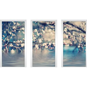 Blue Floral Photography 3 Piece Framed Photographic Print Set by Picture Perfect International
