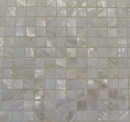 Mesh Mounted 1 x 1 Authentic Polished Seashell Mosaic Tile in White by Matrix-Z