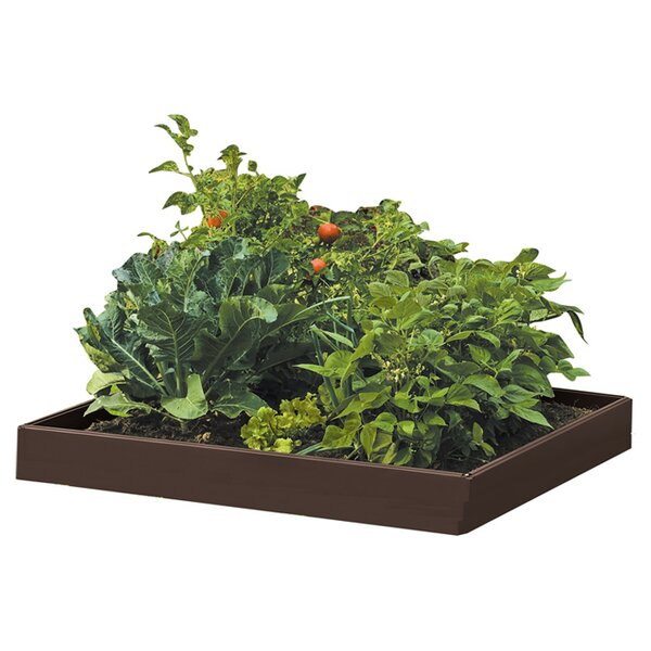 Superieur Raised Garden Beds U0026 Elevated Planters Youu0027ll Love | Wayfair