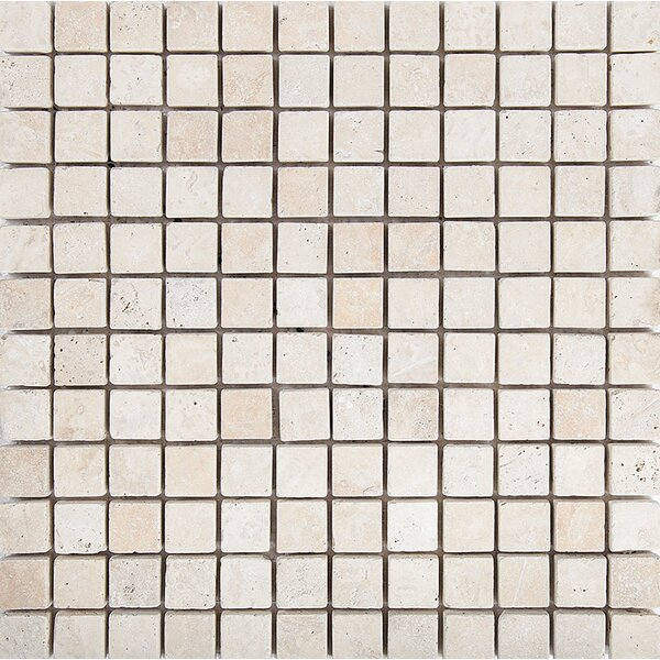Tumbled 1 x 1 Stone Mosaic Tile in Ivory by Parvatile