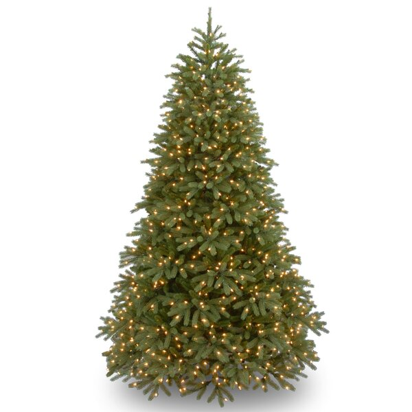 Jersey Fraser Green Fir Artificial Christmas Tree with 1000 Warm White LED Lights Includes Stand by Winston Porter
