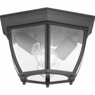 Dunmore 2-Light Outdoor Flush Mount By Alcott Hill Outdoor Lighting