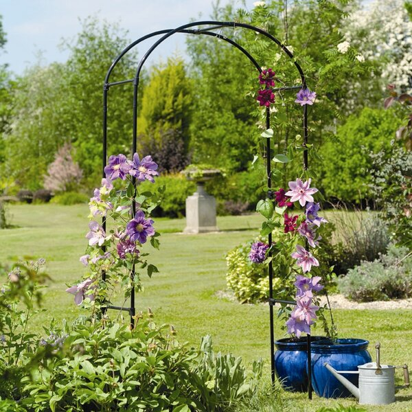 Rose Steel Arbor by Gardman