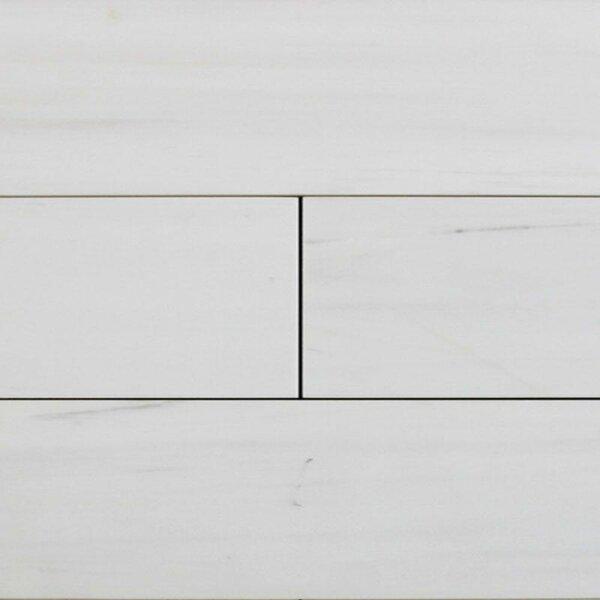 4 x 12 Marble Look Wall & Floor Tile