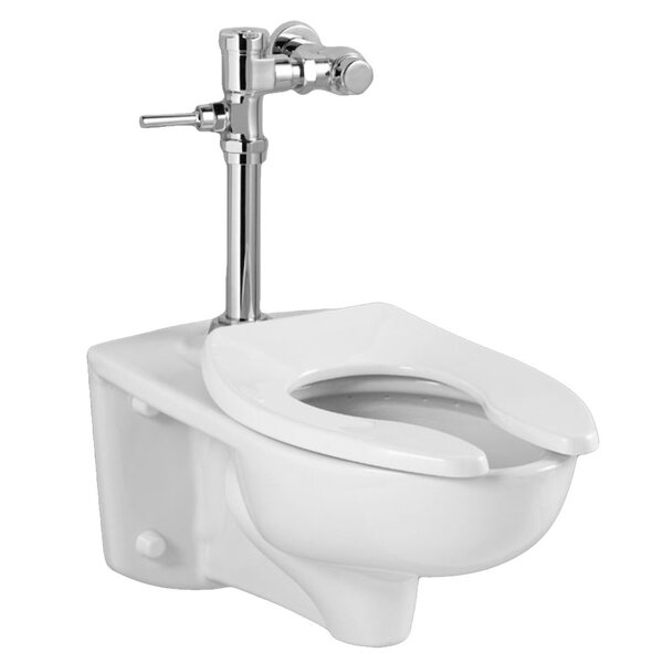 Afwall EverClean 1.6 GPF Elongated One-Piece Toilet by American Standard