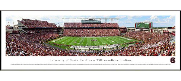 NCAA 50 Yard Line Standard Frame Panorama by Blakeway Worldwide Panoramas, Inc