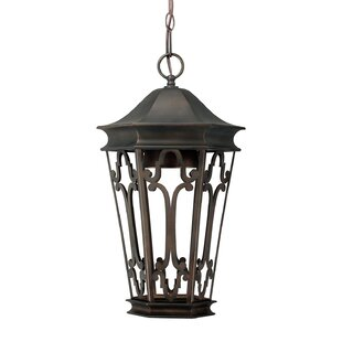 Dark Sky 1-Light Outdoor Hanging Lantern By Capital Lighting Outdoor Lighting