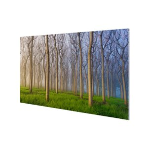 'Dreamy Field' Photographic Print on Wrapped Canvas by Ebern Designs