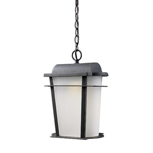 Where buy  Marko 1-Light Outdoor Hanging Lantern By Gracie Oaks