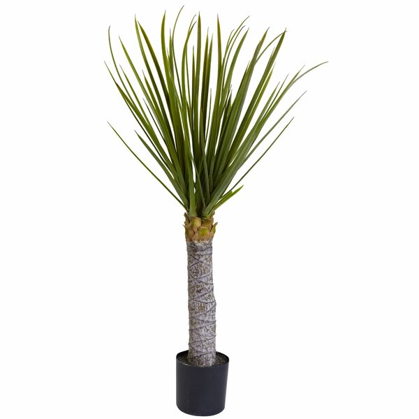 Yucca Tree in Pot by Nearly Natural