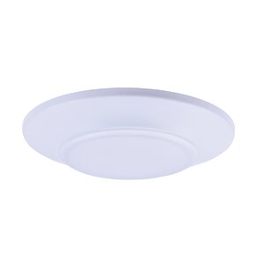 Adelinna 1-Light LED Flush Mount