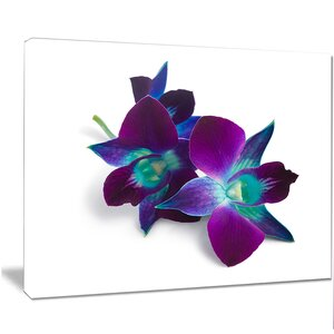 'Deep Purple Orchid Flowers on White' Photographic Print on Wrapped Canvas by Design Art
