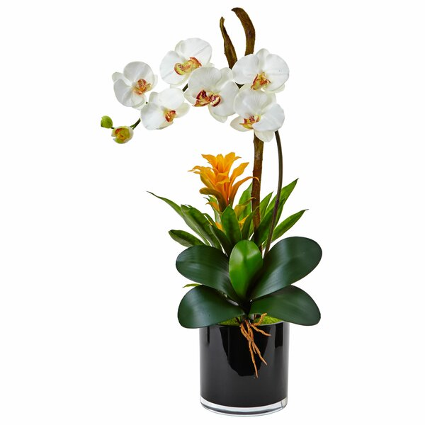 Silk Orchid and Bromeliad Floral Arrangement in Planter by Mercer41