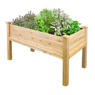 Wood planters youll love wayfair elevated 2 ft x 4 ft raised garden workwithnaturefo