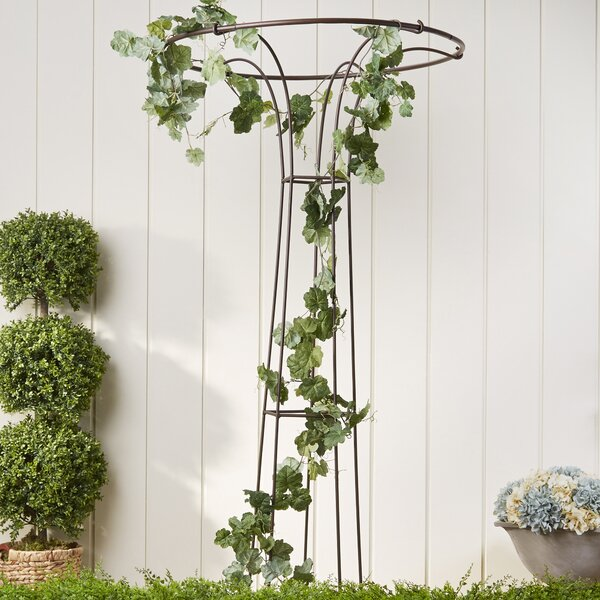 Flared Iron Trellis by Birch Lane™