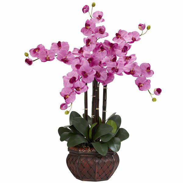 Phalaenopsis with Decorative Vase Silk Flowers in Mauve by Nearly Natural