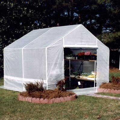 9.33 Ft. W x 10.25 Ft. D Greenhouse by King Canopy